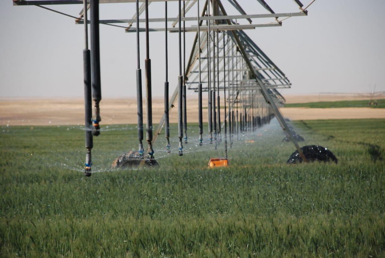 نقيب الفلاحين: مصر تعيش عصر ندرة المياه و