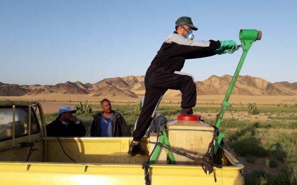 الزراعة توسع دائرة أعمال الرصد والمكافحة للجراد الصحراوي في مساحة 1420 هكتار علي سواحل البحر الأحمر