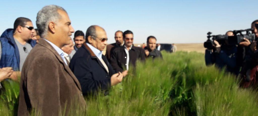 وزير الزراعة: مشروع غرب المنيا نموذج نجاح ل