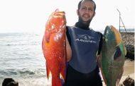 السعودية تحظر صيد الإسماك في البحر الأحمر لمدة شهرين