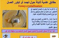 خبير دولي يقدم 3 حقائق حول تجمد عسل النحل وضوابط الإستهلاك