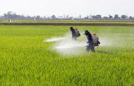 السعودية تحدد ضوابط تداول واستخدام المبيدات.. تعرف عليها