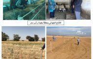 رئيس بحوث الصحراء يتلقي تقريرا عن المحطات البحثية في جنوب سيناء
