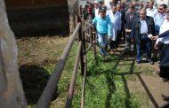 بالصور.. وزير الزراعة يختتم جولته في بني سويف بزيارة محطة الإنتاج الحيواني ويتفقد حقول اكثارات التقاوي