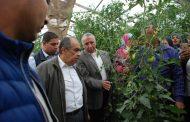 حصري...الزراعة: 18 فريقا بحثيا للبرنامج الوطني لإنتاج التقاوي وننشر تفاصيل الخطة