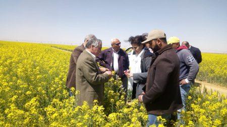بالفيديو .. وفد الإيفاد يتفقد مشروع غرب المنيا