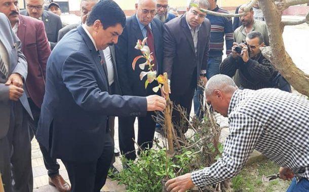 نقيب الزراعيين: تدشين حملة زراعة مليون شجرة مثمرة بمحافظة القليوبية