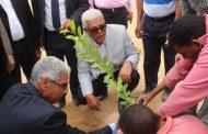 نقيب الزراعيين: مشروع الرئيس لزراعة مليون شجرة مثمرة نموذج دولي يحترمه العالم