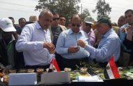 ماذا طلب محافظ كفر الشيخ من وزير الزراعة؟.... كلمة السر في الارز
