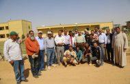 رئيس قطاع الإنتاج: زراعة 1000 فدان و 5 أصناف من القمح في غرب المنيا