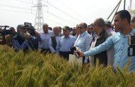 وزير الزراعة يشيد بجهود معهد المحاصيل...(إبداع في إنتاج أصناف الحبوب)