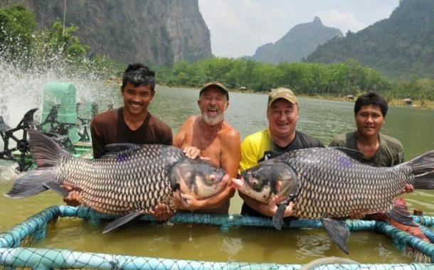10 دول تنتج 112 مليون طن من الأسماك ..تفوق آسيوي وتراجع أمريكي