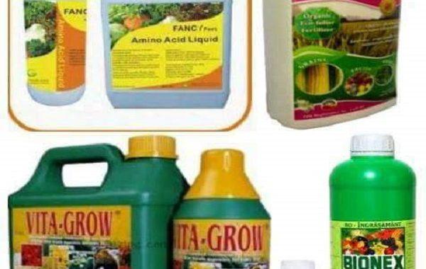 د محمد ابو رداحه يكتب: حالات إستخدام الأسمدة الورقية في تغذية النبات