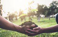 تقرير دولي:تجريف التربة والزراعة المكثفة يهدد الامن الغذائي ويخفض إنتاجية المحاصيل