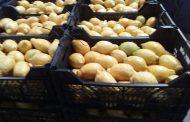 رسمياً.. الاتحاد الأوروبي يلغي الفحوصات الإضافية على الجوافة المصرية