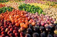 مصر... الصادرات الزراعية تقفز لأكثر من 4.4 مليون طن