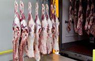 بدء تطبيق أول خطة لتطوير سلسلة تداول اللحوم في مصر بمحافظة الأسماعيلية