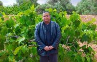 د وائل غيث يكتب: تعديل الممارسات الزراعية والتكنولوجية تحت ظروف الزراعات المطرية الصحراوية