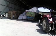 بالصور الزراعة تستلم تقاوي خام المحاصيل الشتوية من المزارعين