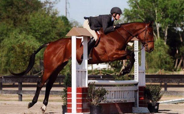 بالصور.. أغلي 10 خيول في العالم بقيمة 225 مليون دولار والاول بـ70 مليون دولار