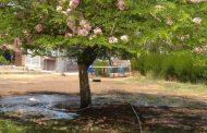 د. اسماعيل عبد الجليل يكتب: بلاغ للحكومة ضد لصوص المياه !