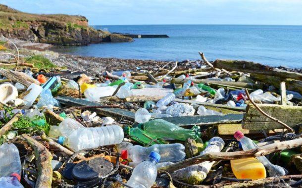 د مجدي علام يكشف مخاطر مخلفات البلاستيك على الأحياء البحرية وأسماك النيل