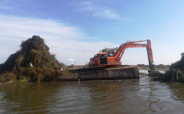 الزراعة: الانتهاء من تطهير بحيرة المنزلة ومعالجة مياه مصرف بحر البقر