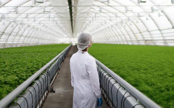 بـ 20 جنيها .. كيف تحصل على رخصة صوبة زراعية من وزارة الزراعة ؟