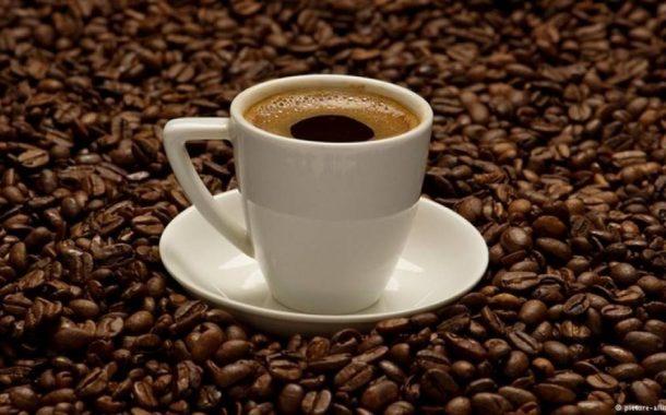 إحتفالا باليوم العالمي للقهوة... 9 معلومات عن شجرة البن