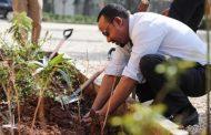 أثيوبيا تحطم الأرقام القياسية في زراعة الاشجار بـ 353 مليون شتلة في يوم (صور)