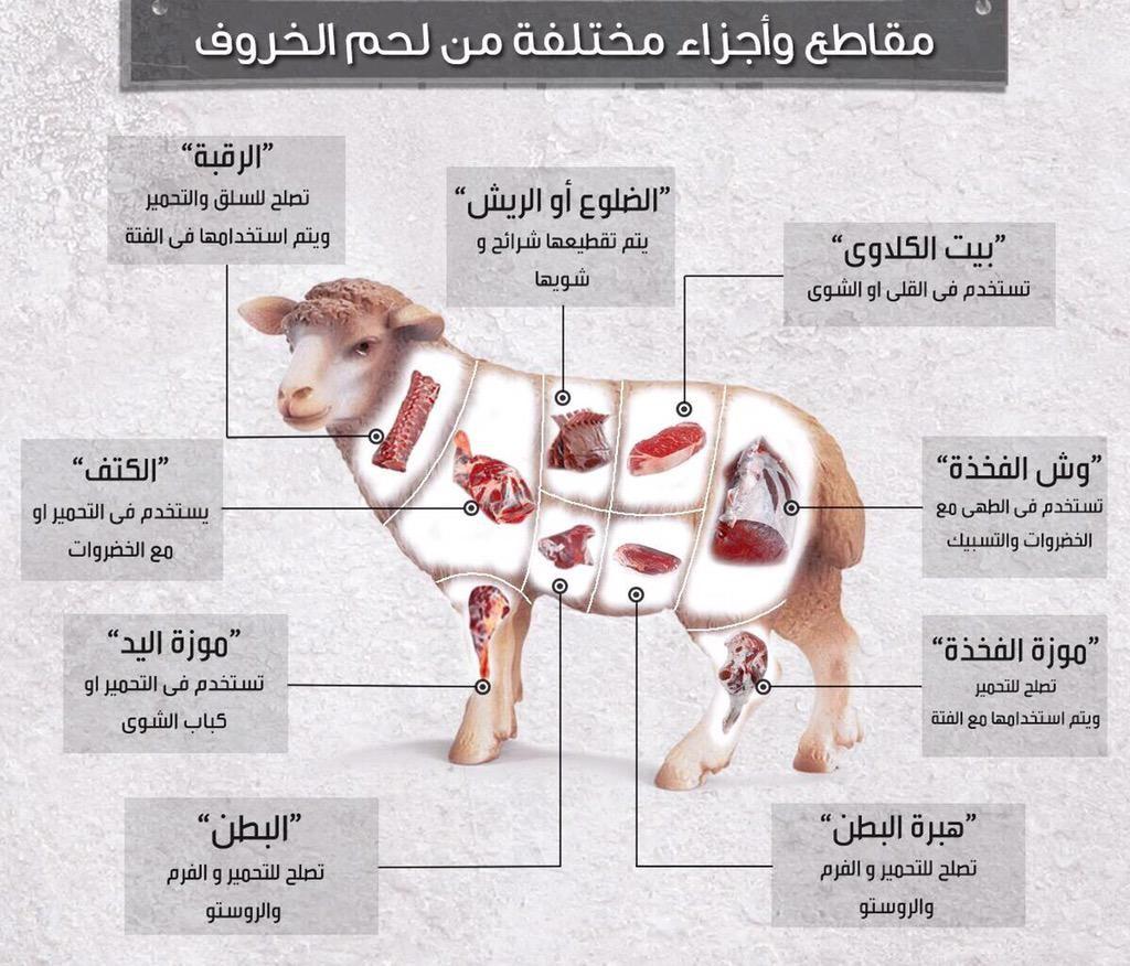 ما هي أفضل قطعيات لحوم خروف العيد؟ (تفاصيل)