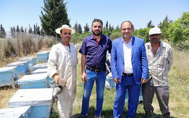 اللاذقية... أجمل موقع سياحي وأفضل عسل نحل في العالم (صور)