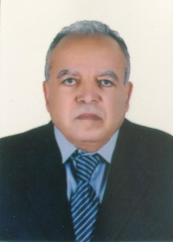 د عطية الجيار يكتب: الطبقة الوسطى والتحولات في بعض الدول العربية