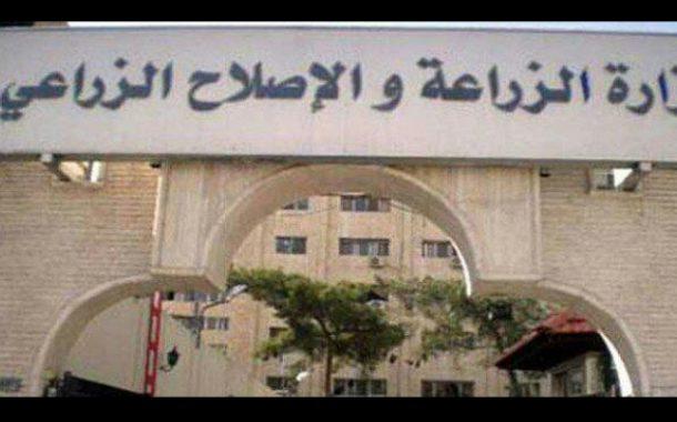 الكويت تقدم منحة 3 ملايين دولار لدعم الزراعة السورية