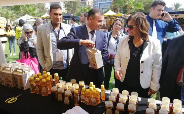 ماذا قدمت مصر لتربية النحل وإنتاج العسل؟...نائب وزير الزراعة ترد