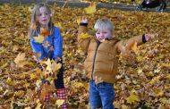 7 مشاهد تحكي مناظر الجمال في فصل الخريف