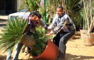 السبت المقبل...وزير الزراعة يفتتح النسخة الأولى من معرض زهور الخريف بمشاركة ١٧٠ شركة عارضة