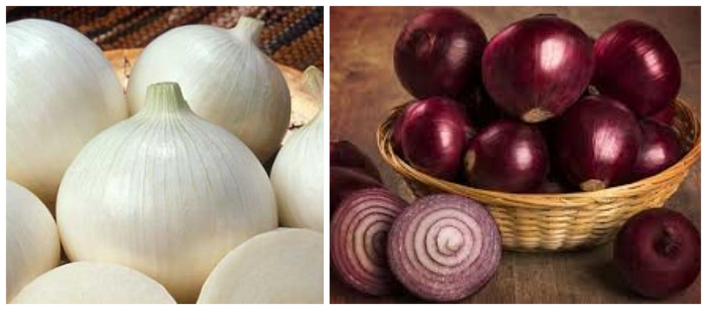 العلم يرد...ما هو الفرق بين أنواع البصل الأحمر والأبيض؟