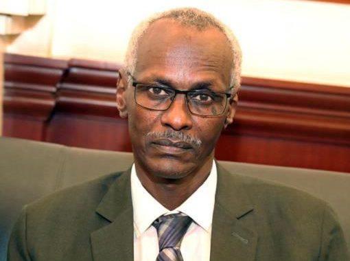 وزير الري السوداني يطرح رؤية لكمية تخزين مياه سد النهضة (تفاصيل)