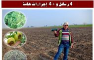 د محمد فهيم: رســـــــــــــــائل زراعية قصيرة SMS للمحاصيل الزراعية