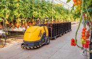 هذه هي الزراعة الذكية...توفر 50% من المياه وإنتاجية وجودة عالية وتكاليف منخفضة