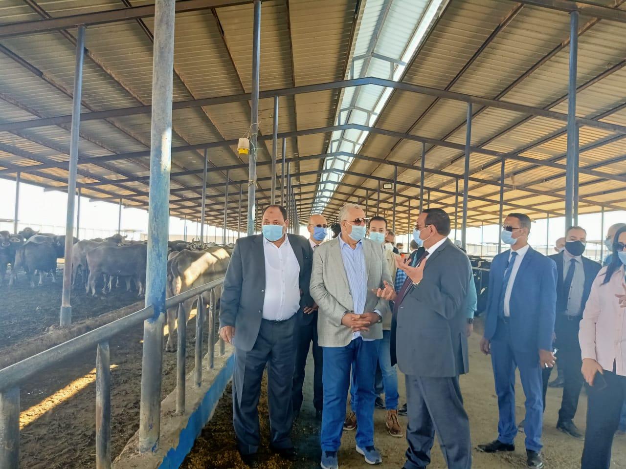 تفاصيل جولة وزير الزراعة لتفقد مشروعات غرب النوبارية