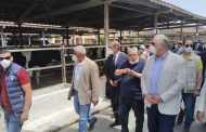 بالصور...وزير الزراعة: البنك المركزي يقدم تمويل بفوائد ميسرة للأنشطة الزراعية والحيوانية ومراكز تجميع الألبان