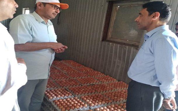 بالصور... رئيس قطاع الإنتاج يقوم بجولة مفاجئة علي المزارع بالإسكندرية