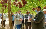 وزير الزراعة: توجيهات الرئيس السيسى بالاهتمام بإستصلاح الأراضى لانتاج المحاصيل الاستراتيجية
