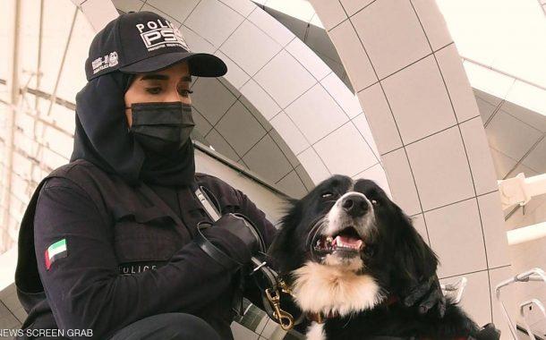 الأمارات تنجح في إستخدام الكلاب في الكشف عن المصابين بكورونا